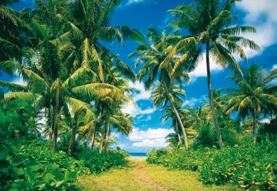 Fototapeta na zeď Výhled Tahity