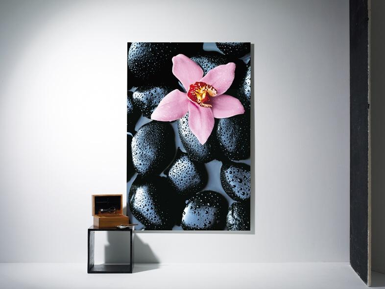 Fototapety Orchidej a kameny