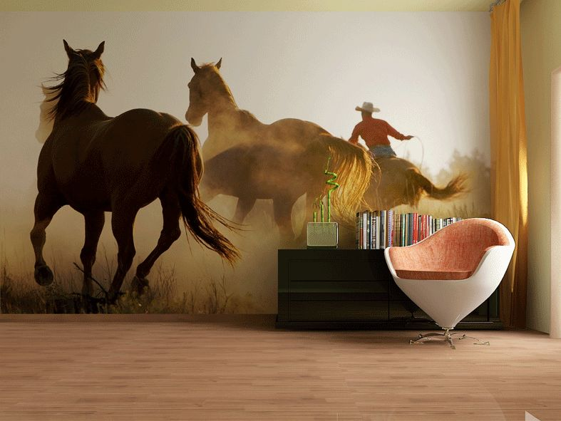 Fototapeta na zeď Koně