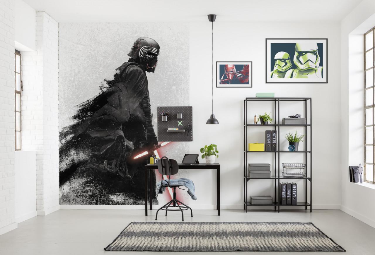 Fototapeta Star Wars - Hvězdné války, Kylo Vader Shadow
