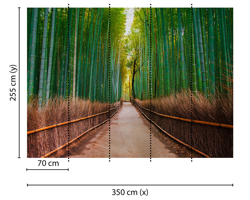 Fototapeta Vlies Livingwalls Bambusový park