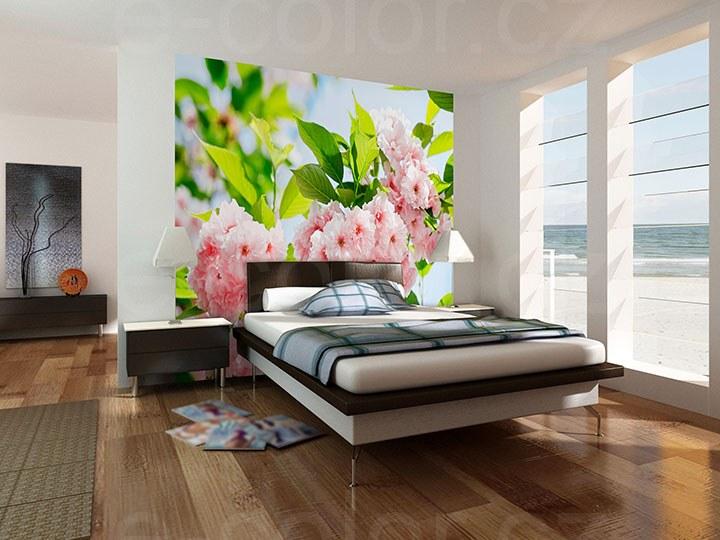 Fototapety Květy Sakura