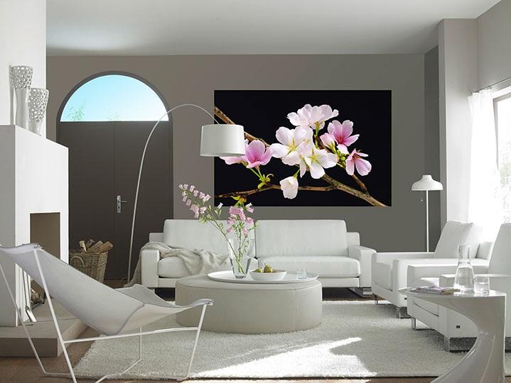 Fototapety Květ třešně