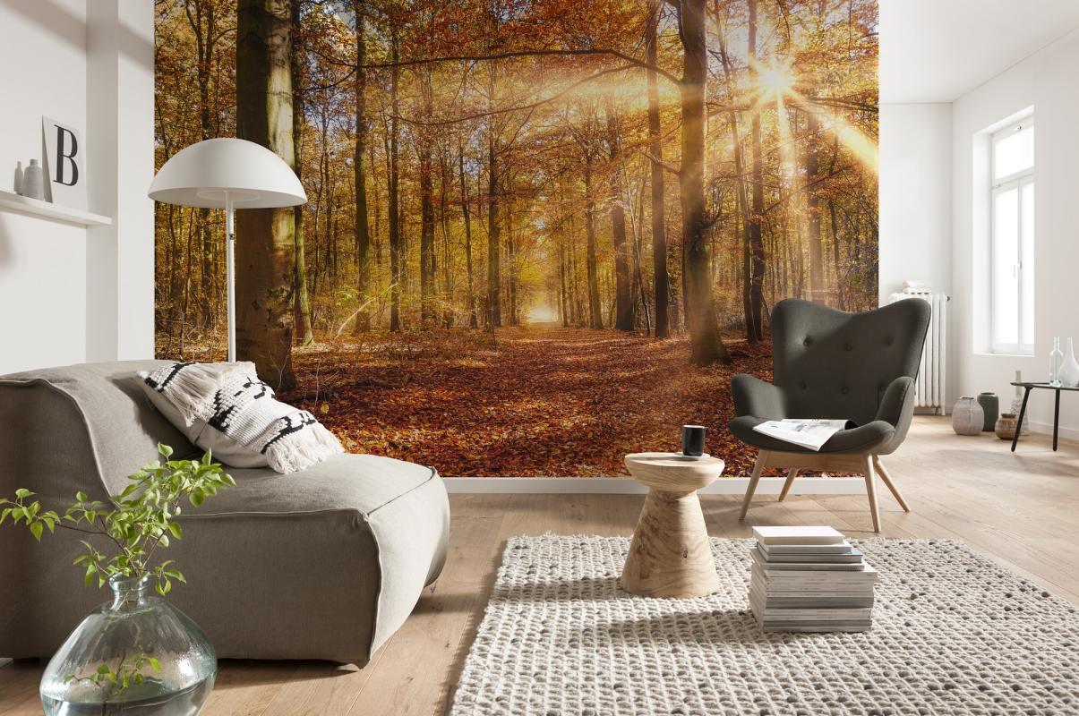 Fototapeta na stěnu Zlaté podzimní paprsky