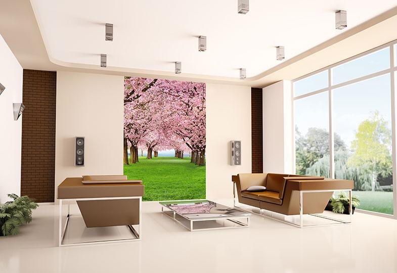 Fototapety Třešně v sadu