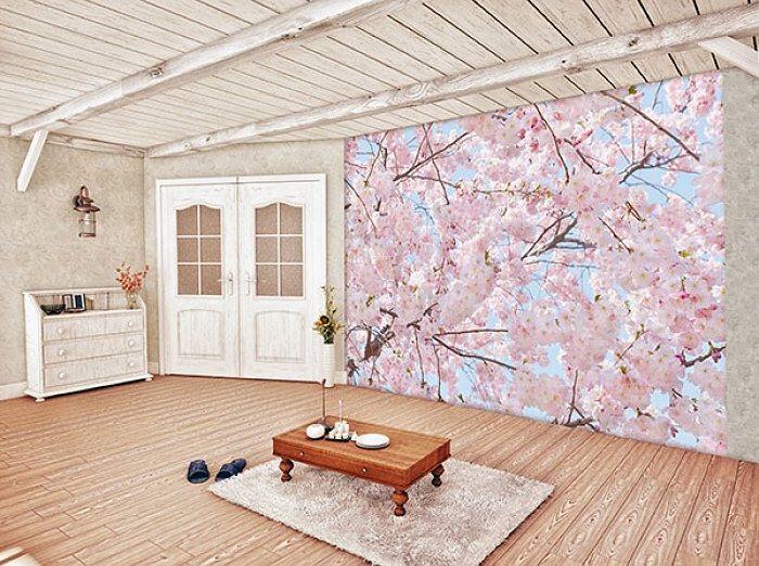 Fototapety Kvetoucí třešeň na jaře