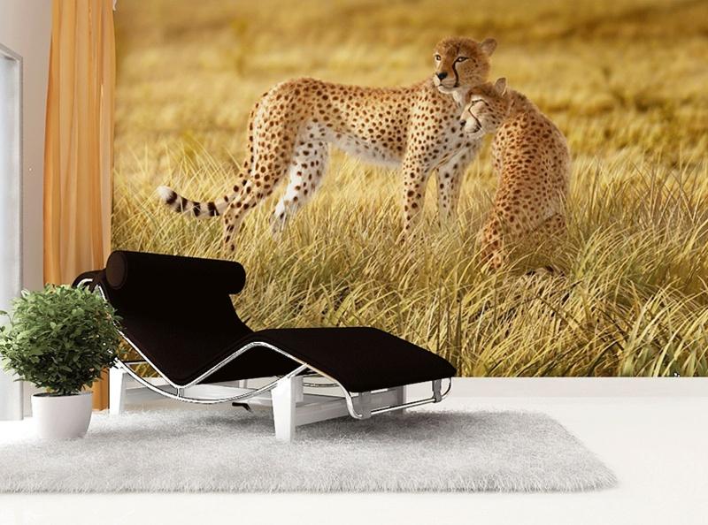 Fototapety na zeď Gepard