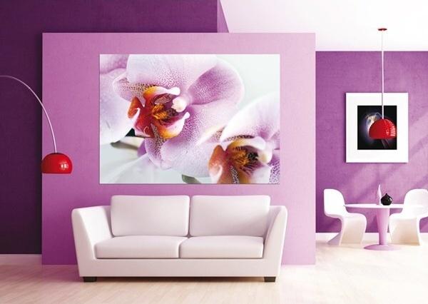 Fototapety Orchidej fialová