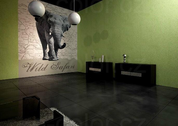 Fototapeta na zeď Divoké Safari