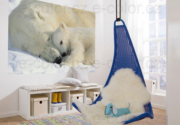 Fototapeta na zeď Polární Medvědi