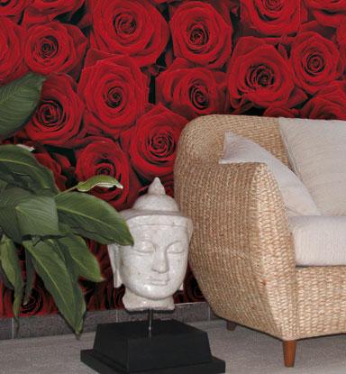 Fototapety na zeď Růže