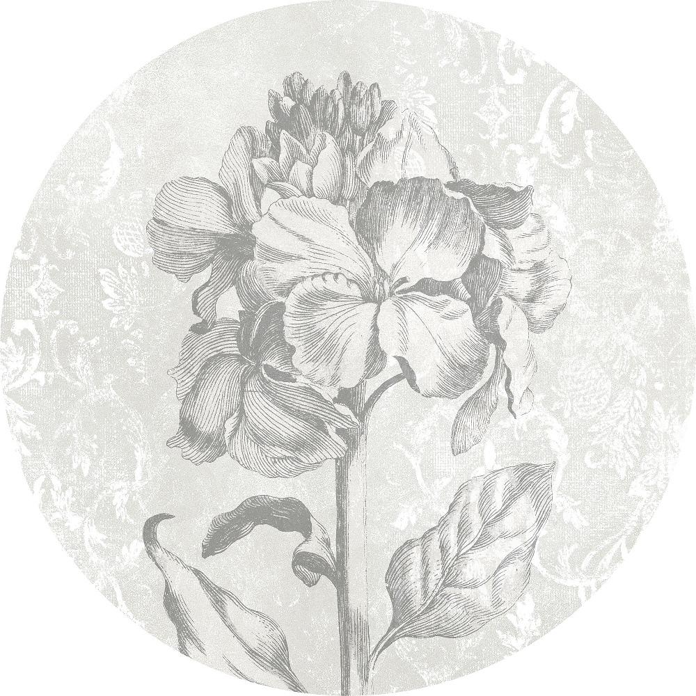 Samolepící fototapeta kruh - History of Arts - Barokní krása