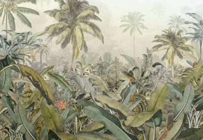 Fototapeta Vlies Prales v Amazonii
