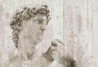 Fototapeta vlies David pouliční umění