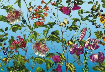 Fototapeta Vlies Květiny z mé zahrady