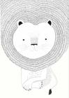 Dětská fototapeta Bambino XVIII Lev bílá