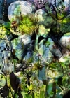 Fototapety Afroditina zahrada