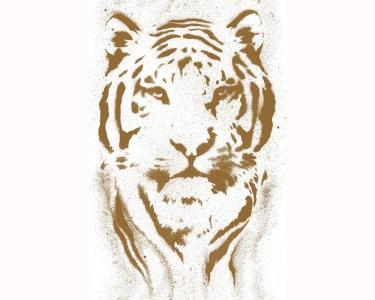 Samolepící tapety tygr hnědá