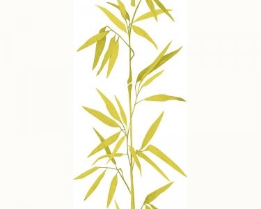 Samolepící tapety bambus zelená