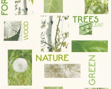 Tapety na zeď Koktejl Příroda zelená
