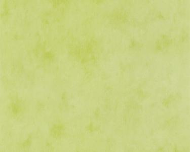 Dětské tapety pro kluky a holky Les zelená
